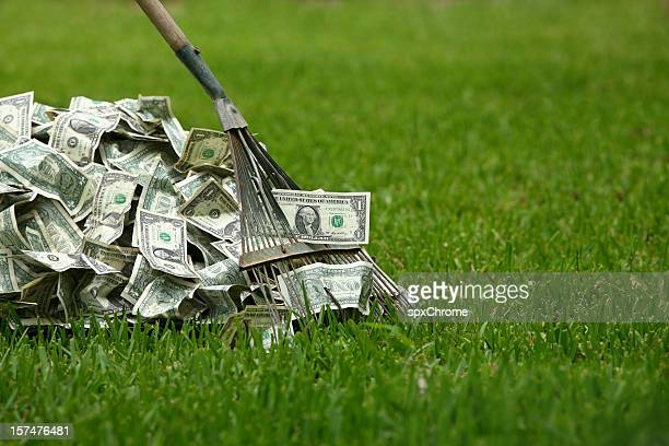 raking in the dough - rake stock pictures, royalty-free photos & images