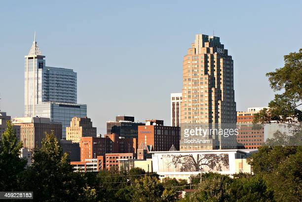 Raleigh, North Carolina, USA-Skyline