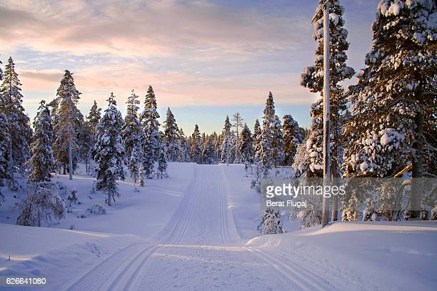 rally road finland - rally car racing stock pictures, royalty-free photos & images