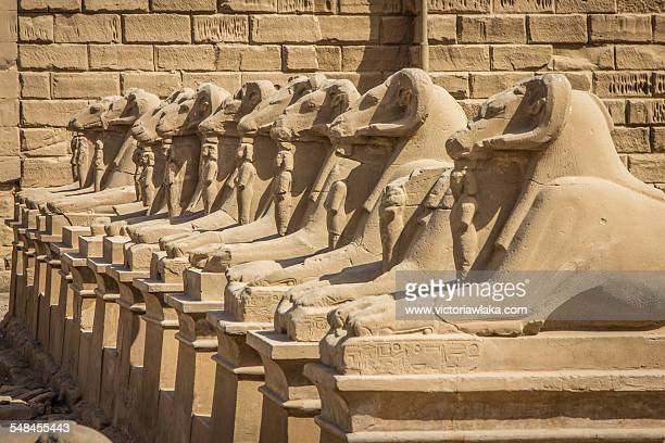 Ram statues at Luxor Temple in Egypt