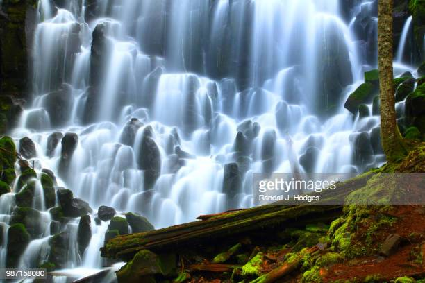 ramano falls in the mt hood wilderness in mt hood national fores - forens stock pictures, royalty-free photos & images