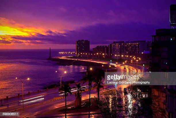 rambla de montevideo - montevideo stock pictures, royalty-free photos & images