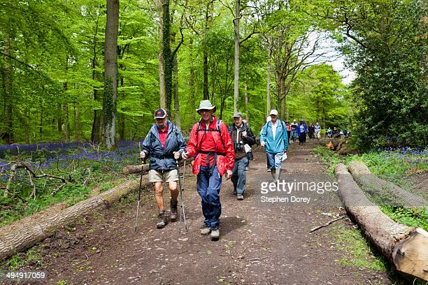 Ramblers - Forest of Dean, Gloucestershire UK