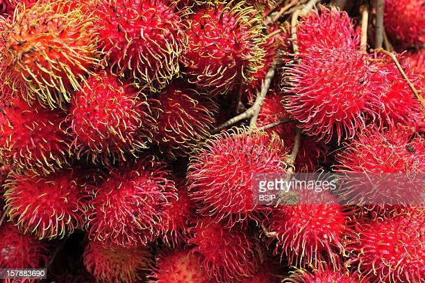Ramboutan Fruit