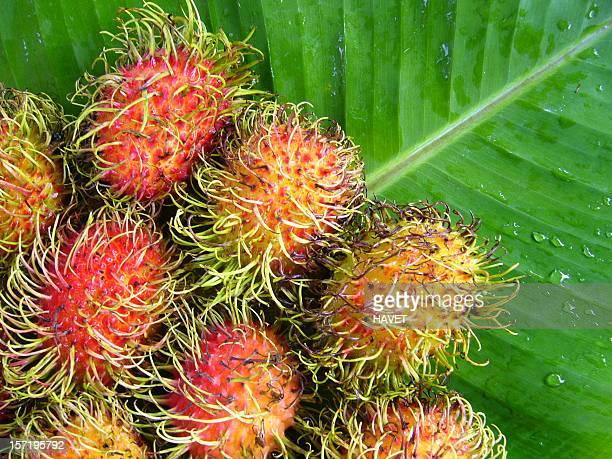 rambutans - fruta tropical fotografías e imágenes de stock