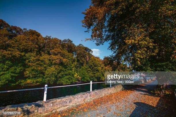 ramelton - nee nee stock photos and pictures