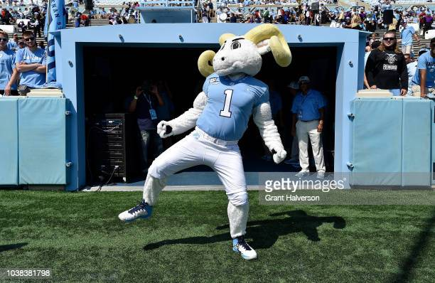 Rameses mascot of the North Carolina Tar Heels performs during their game against the Pittsburgh Panthers at Kenan Stadium on September 22 2018 in...