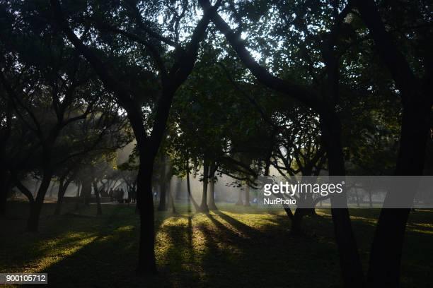 Ramna Park in Winter Photo has taken on Sunday 31st December 2017