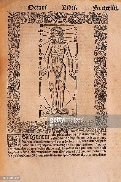 Ramon Llull Spanish writer and philosopher Practica Compendiosa Artis Raymundi Lulli 1523 Book 8 Medicine subject Engraving depicting the human body...
