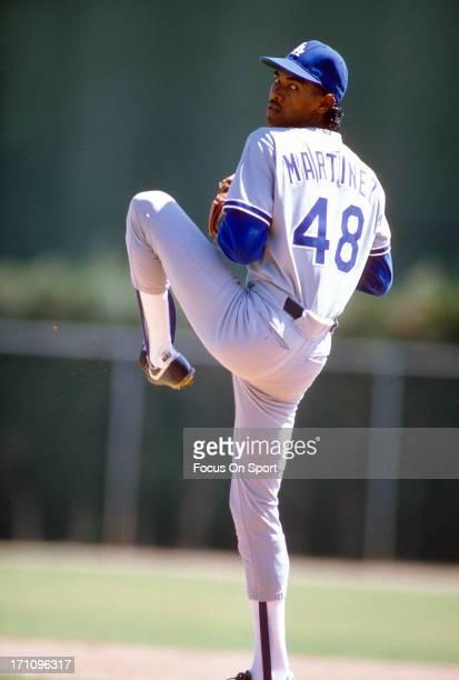 野球選手 投手 ラモン マルティ...