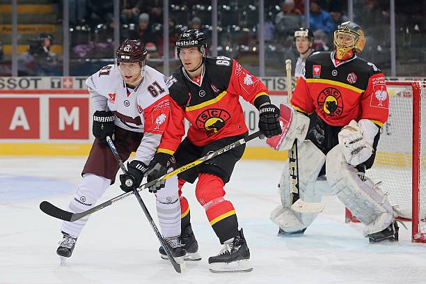 CHE: SC Bern v Sparta Prague - Champions Hockey League