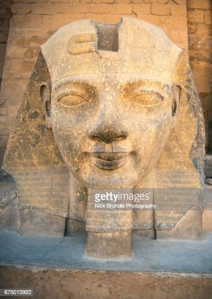 ramses ii statue, luxor temple, egypt - rameses ii stock photos and pictures
