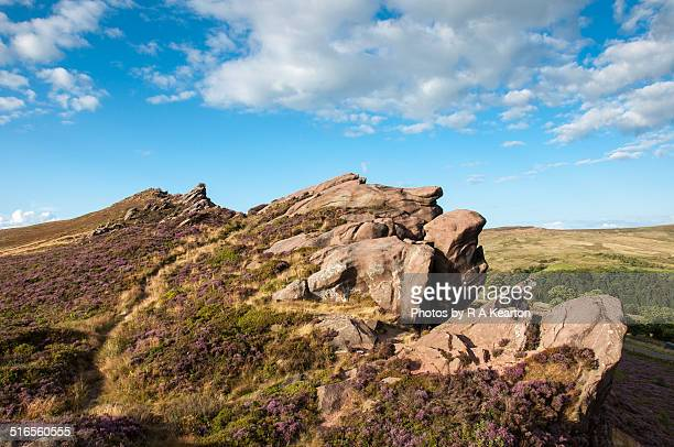 ramshaw rocks on a sunny summer evening - escarpment stock pictures, royalty-free photos & images