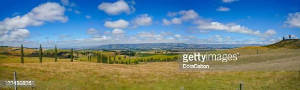 un ranch à geraldine-fairlie highway, nouvelle-zélande - otago photos et images de collection