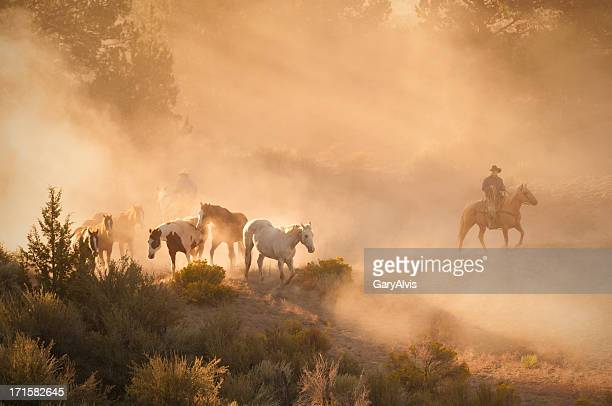 Ranch hands tending to a herd of horses at sunrise.
