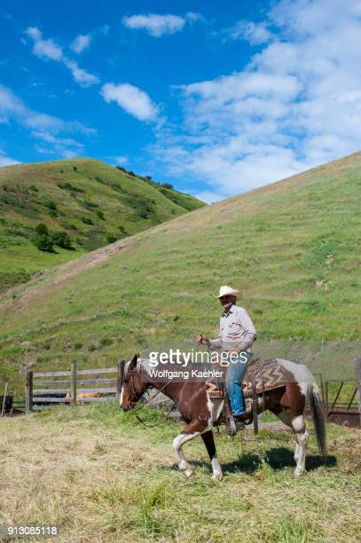 Rancher riding horse at cattle coral near Snake River in the Palouse Eastern Washington State USA