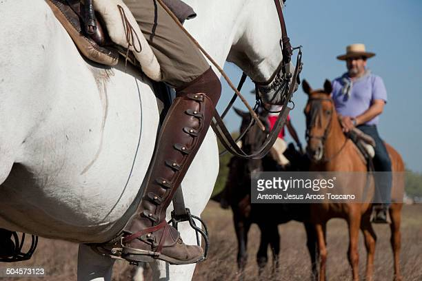 Ranchers chatting during the transfer of the Broncos from the marshes of the Doñana National Park to the town of Almonte to be labeled and sold. We...