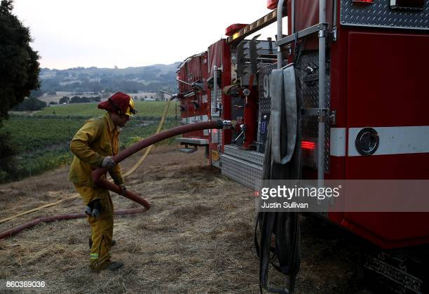 Rancho Adobe Fire District firefighter rolls up hose during a controlled burn to create a fire line to battle the Tubbs Fire on October 11 2017 in...