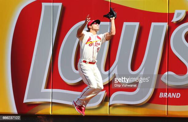 Randal Grichuk of the St Louis Cardinals catches a fly ball against the Cincinnati Reds in the fourth inning at Busch Stadium on April 8 2017 in St...