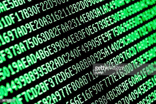 random green hexadecimal computer code data on monitor screen