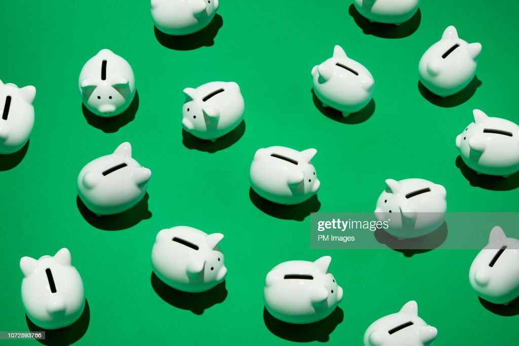 Random little white piggy banks : Stock Photo