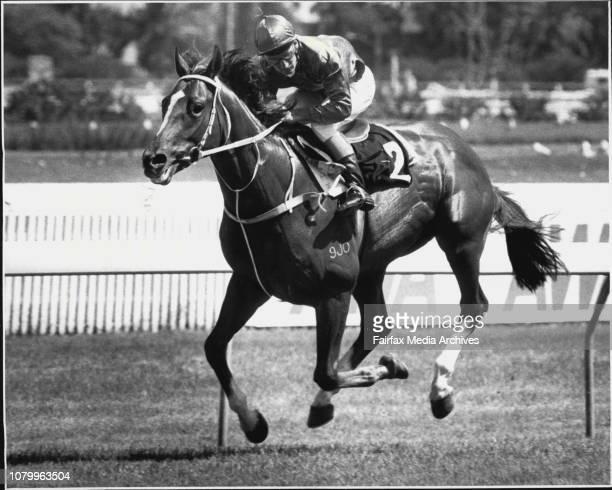 Randwick - Race 3 - 1st No. 2 Mardi Gras riden by L. Dittman. January 26, 1987. .