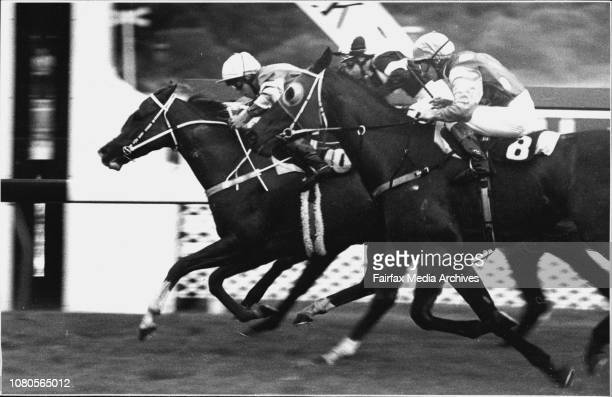Prendre La Jour R to S Jockey M PrivatoWinning trainer Kevin Wallis amp wife Leigh April 24 1993
