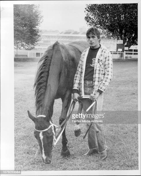 Strapper Peter Marshall gives Doncaster Favourite Anon Angel a pick after today's work April 4 1985