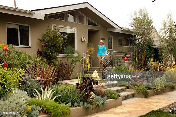 Randy Bergman walks out the front of her home in the Cheviot Hills neighborhood of Los Angeles Bergman's front yard is very drought tolerant with a...