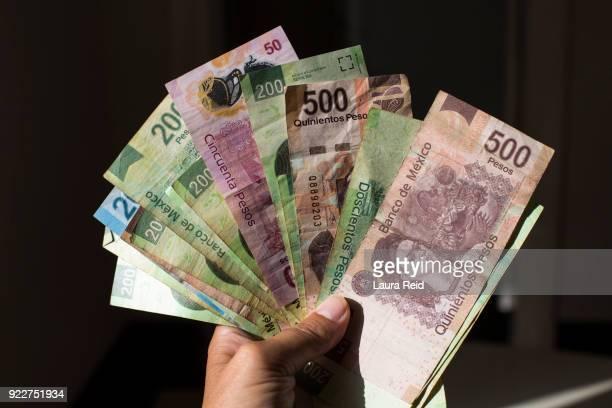 a range of mexican pesos being held in a woman's hand - méxico fotografías e imágenes de stock