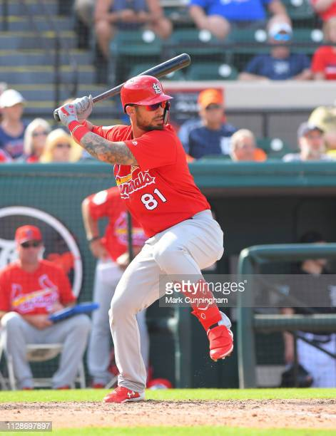 Rangel Ravelo of the St Louis Cardinals bats during the Spring Training game against the Detroit Tigers at Publix Field at Joker Marchant Stadium on...