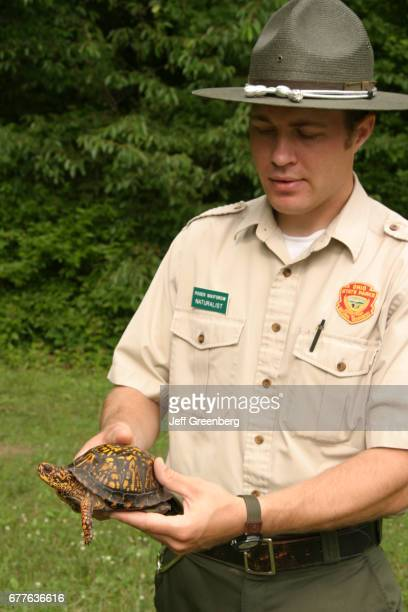 Ranger holding an Eastern box turtle at Findley State Park.