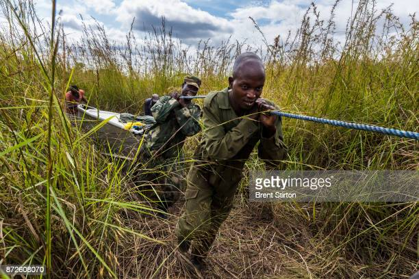 Rangers combine with a Congolese Army platoon for a 21 day mission inside Garamba National Park in the DR Congo they are on the lookout for poachers...