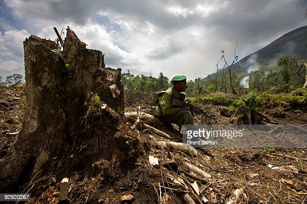 Rangers conduct an anticharcoal patrol in the Kibati region of Virunga National Park April 5 Democratic Republic of Congo They are exploring an area...
