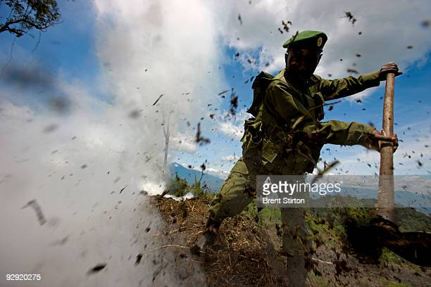 Rangers destroy an illegal Charcoal kiln while conducting a anticharcoal patrol in the Kibati region of Virunga National Park April 5 Democratic...
