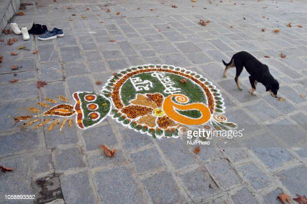 Rangoli seen drawn on the door of homes to celebrate Diwali the festival of lights in the outskirts of Srinagar the summer capital of Indian...
