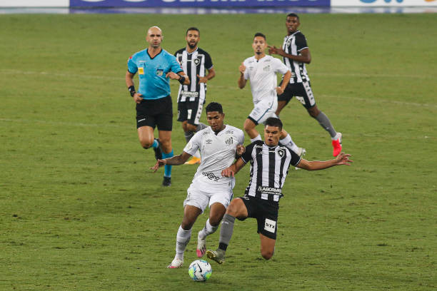 BRA: 2020 Brasileirao Series A:  Botafogo v Santos Play Behind Closed Doors Amidst the Coronavirus (COVID - 19) Pandemic