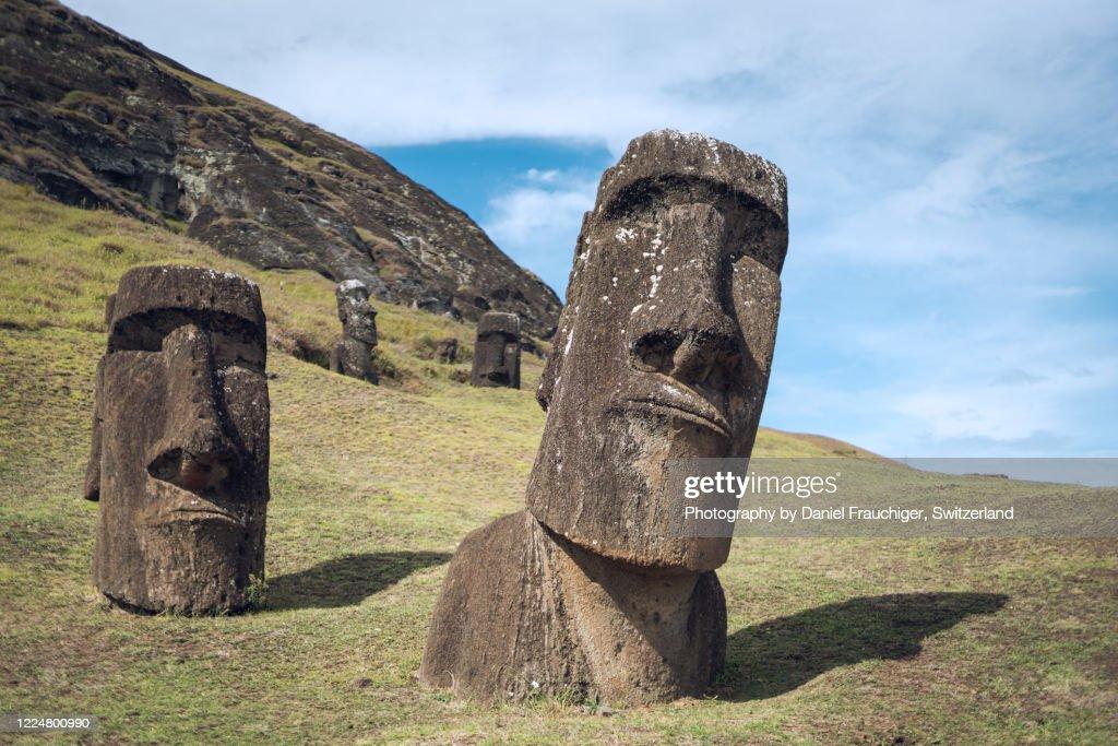 Rano Raraku Moai, Rapa Nui : Stock Photo