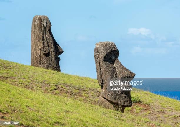 rano raraku moais, rapa nui national park - rano raraku stock pictures, royalty-free photos & images