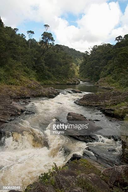 Ranomafana River Ranomafana National Park Fianarantsoa Province Madagascar