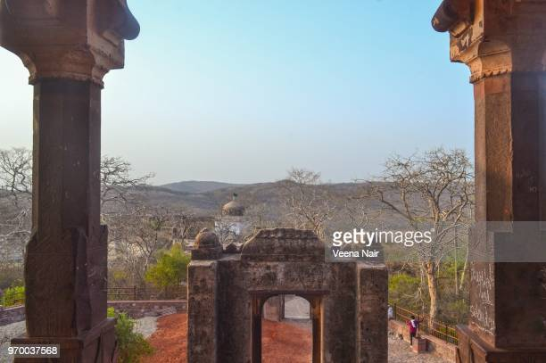 ranthambore fort/unesco world heritage site/rajasthan - ranthambore national park stock pictures, royalty-free photos & images