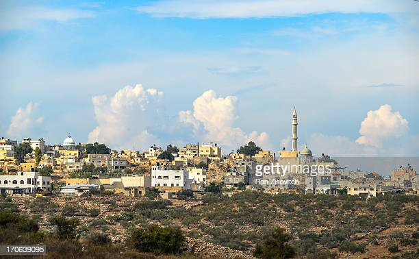 rantis - palestinian stock pictures, royalty-free photos & images