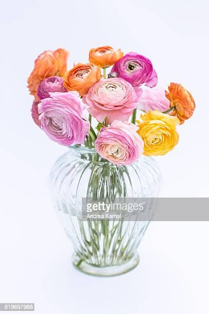 Ranunculus in a vase