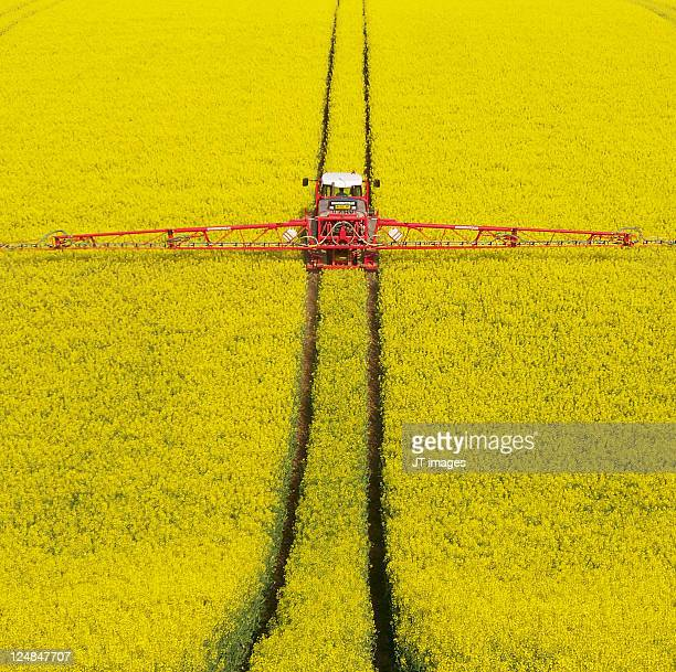 rape seed spraying - oilseed rape stock pictures, royalty-free photos & images