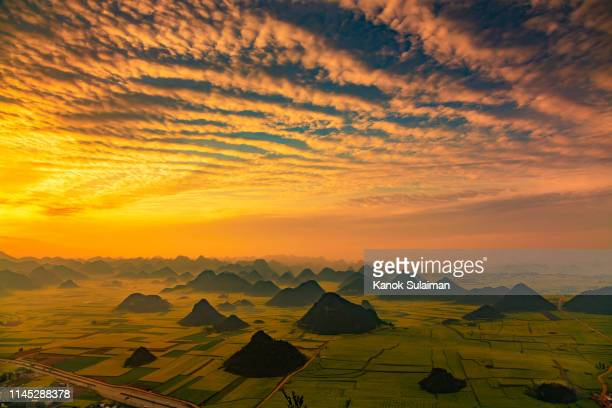 rapeseed flower fields in china - altocumulus stockfoto's en -beelden