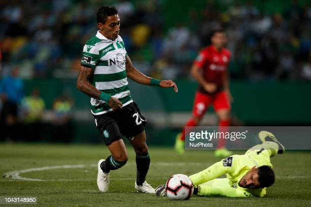 Raphinha of Sporting vies for the ball with Amir Abedzadeh of Maritimo during Primeira Liga 2018/19 match between Sporting CP vs CS Maritimo in...