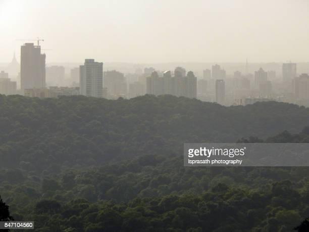 Rapid Urbanization of Modern Cities