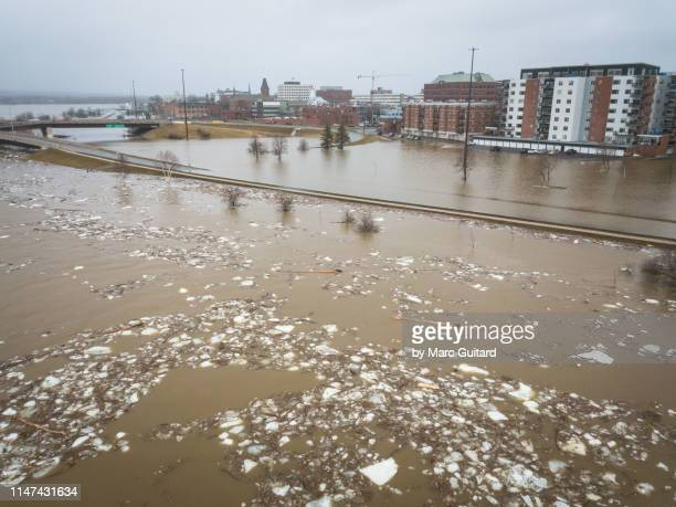 rapidly moving ice flows down a flooded saint john river in downtown fredericton, new brunswick, canada - new brunswick canada stock pictures, royalty-free photos & images