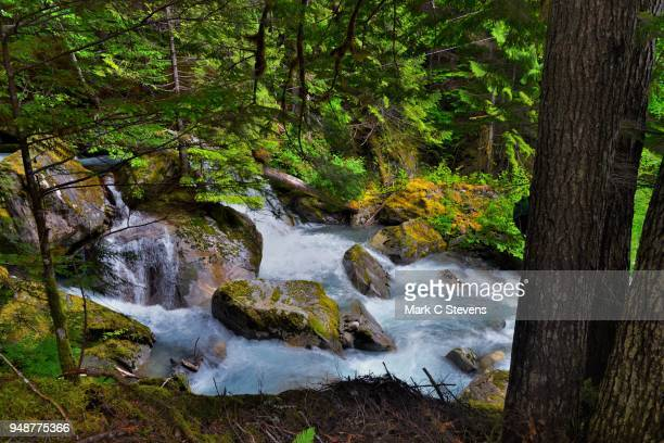 rapids of ladder creek - ross lake stock photos and pictures