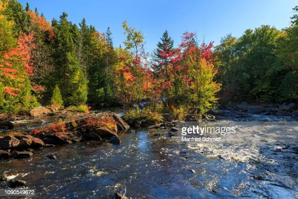 Rapids on the River Riviere du Diable in Autumn, Autumn Coloration, Mont Tremblant National Park, Quebec Province, Canada